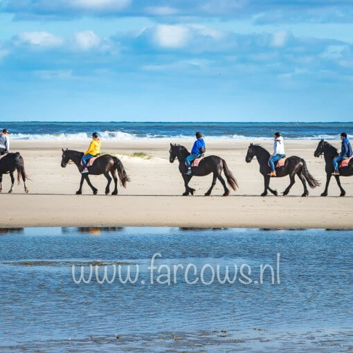 strandrit ameland groep